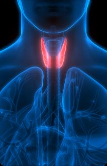 thyroid surgeon in Liverpool