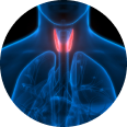 Thyroid Clinic in Cheshire